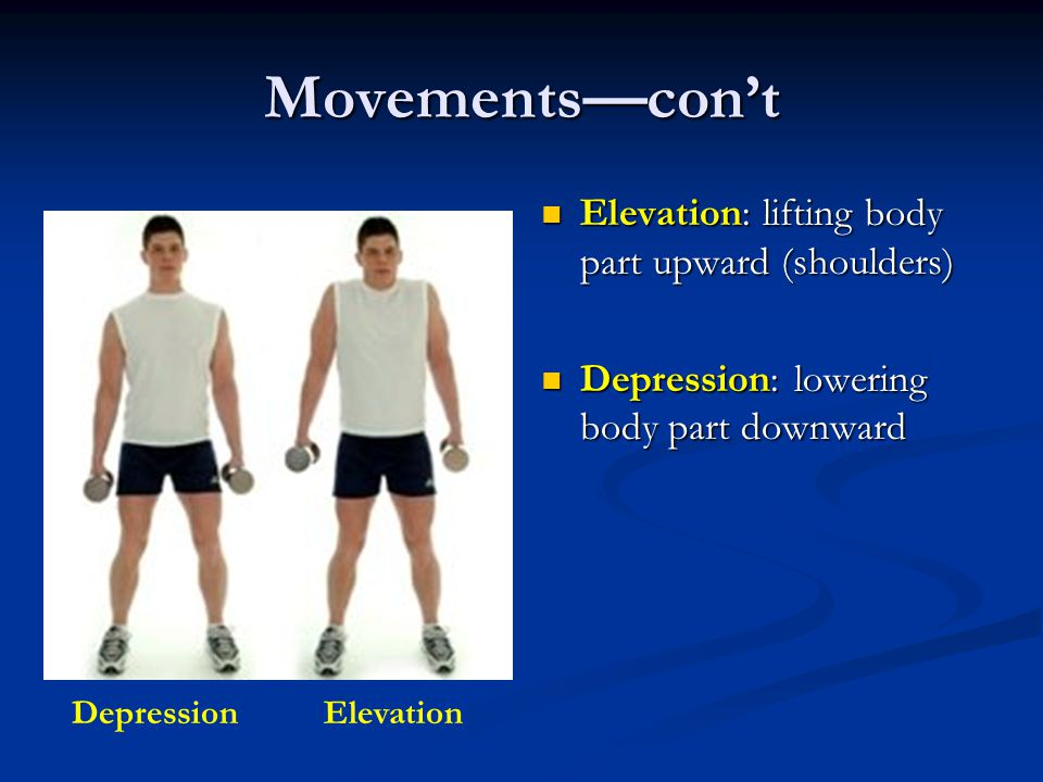 Movements—con't Elevation: lifting body part upward (shoulders) Depression: lowering body part downward DepressionElevation