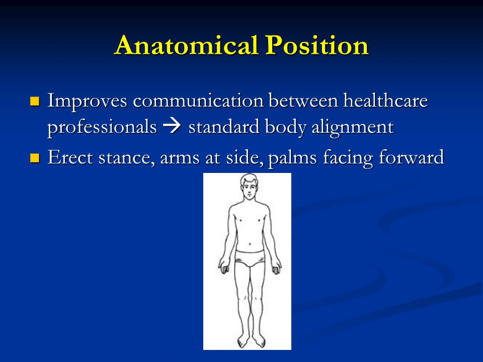Anatomical Position Improves communication between healthcare professionals  standard body alignment Improves communication between healthcare profes
