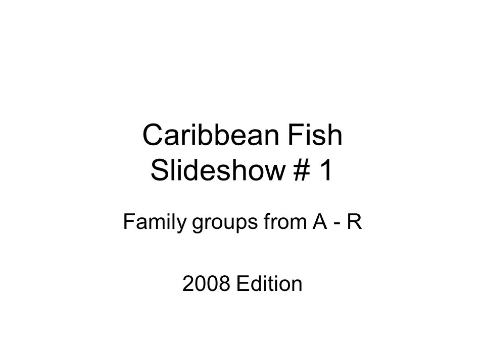 Caribbean Fish Slideshow # 1 Family groups from A - R 2008 Edition