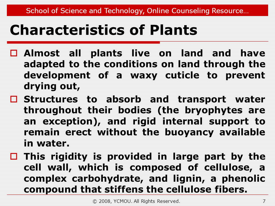 School of Science and Technology, Online Counseling Resource… Characteristics of Plants  Almost all plants live on land and have adapted to the conditions on land through the development of a waxy cuticle to prevent drying out,  Structures to absorb and transport water throughout their bodies (the bryophytes are an exception), and rigid internal support to remain erect without the buoyancy available in water.