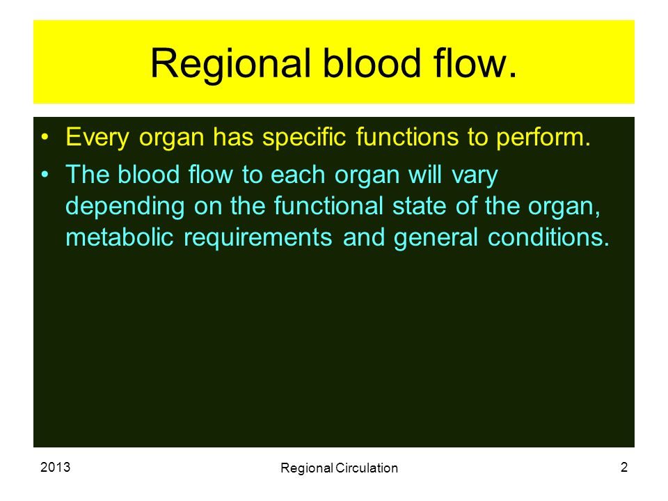 2013 Regional Circulation 3 Pulmonary circulation.