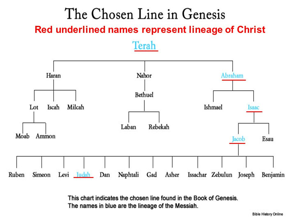 ______ ____ _____ Red underlined names represent lineage of Christ