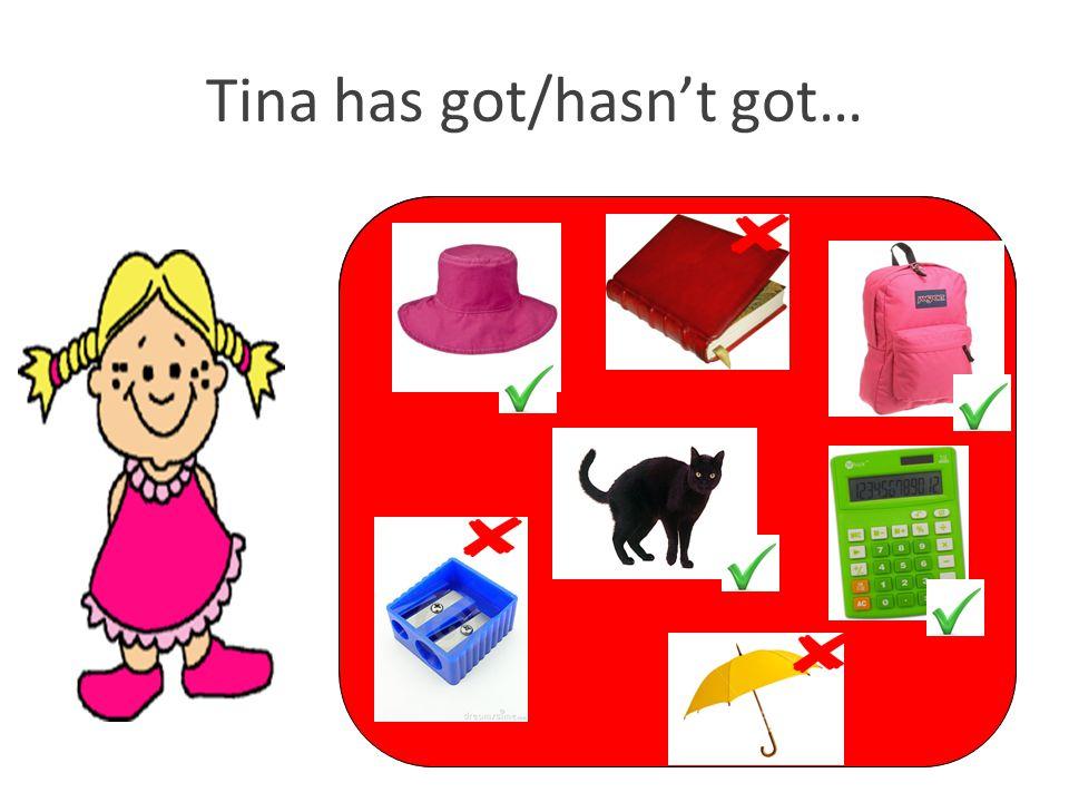 Tina has got/hasn't got…