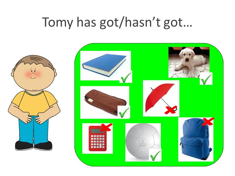 Tomy has got/hasn't got…