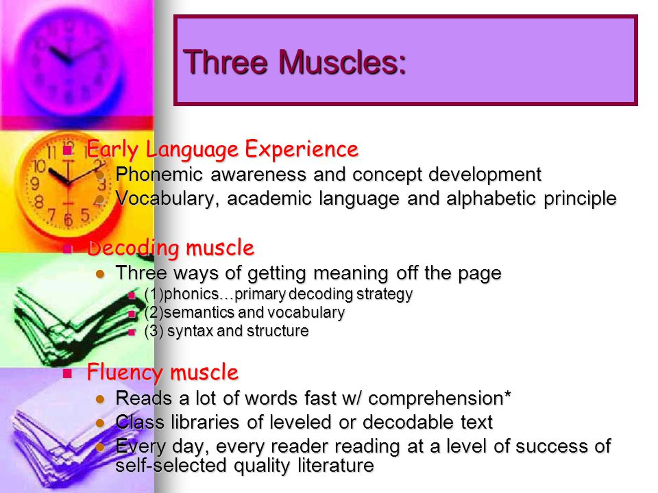 Three Muscles: Early Language Experience Early Language Experience Phonemic awareness and concept development Phonemic awareness and concept development Vocabulary, academic language and alphabetic principle Vocabulary, academic language and alphabetic principle Decoding muscle Decoding muscle Three ways of getting meaning off the page Three ways of getting meaning off the page (1)phonics…primary decoding strategy (1)phonics…primary decoding strategy (2)semantics and vocabulary (2)semantics and vocabulary (3) syntax and structure (3) syntax and structure Fluency muscle Fluency muscle Reads a lot of words fast w/ comprehension* Reads a lot of words fast w/ comprehension* Class libraries of leveled or decodable text Class libraries of leveled or decodable text Every day, every reader reading at a level of success of self-selected quality literature Every day, every reader reading at a level of success of self-selected quality literature