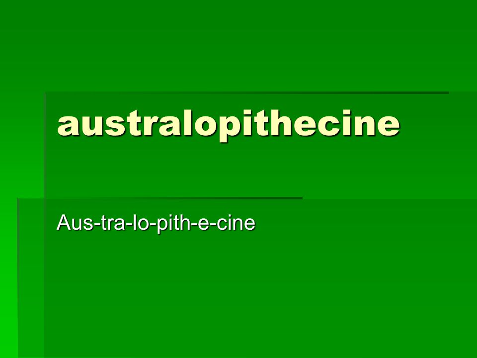 australopithecine Aus-tra-lo-pith-e-cine