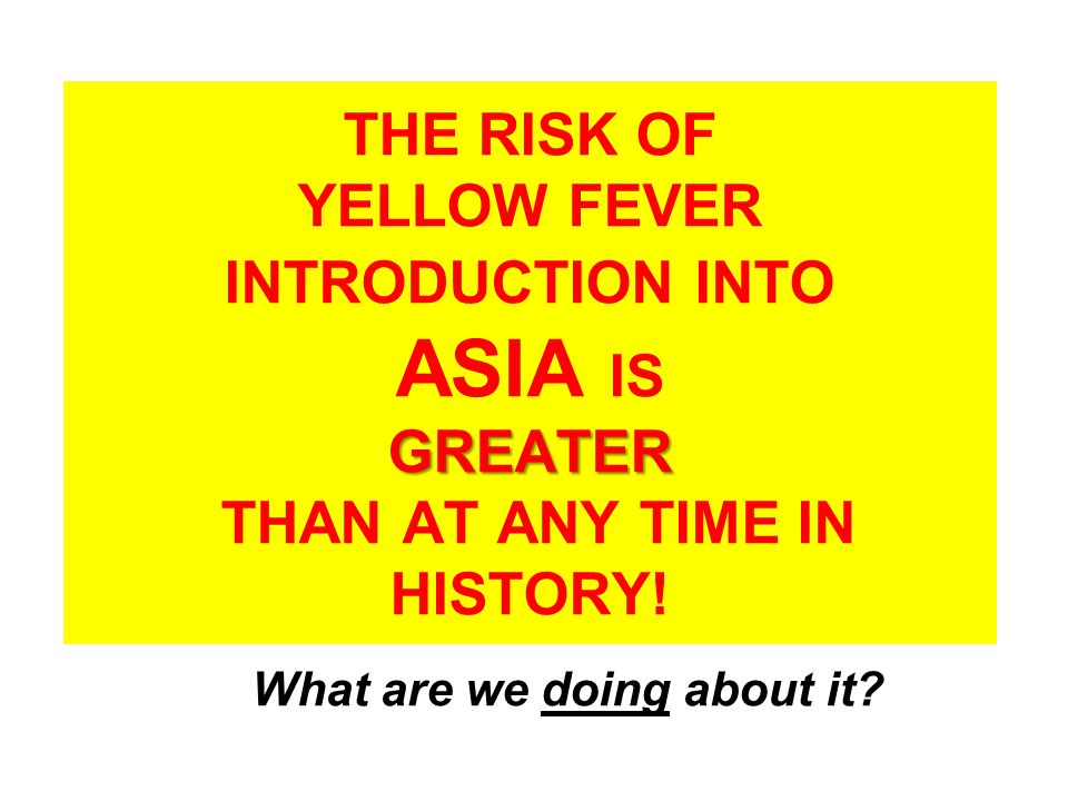 GREATER THE RISK OF YELLOW FEVER INTRODUCTION INTO ASIA IS GREATER THAN AT ANY TIME IN HISTORY.
