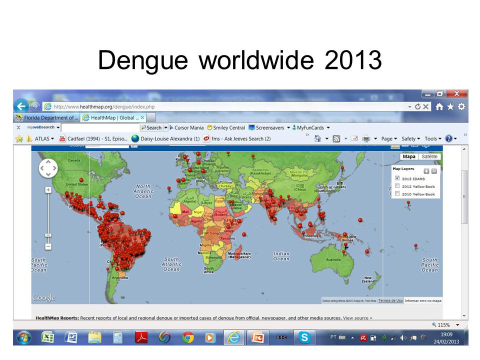 Dengue worldwide 2013