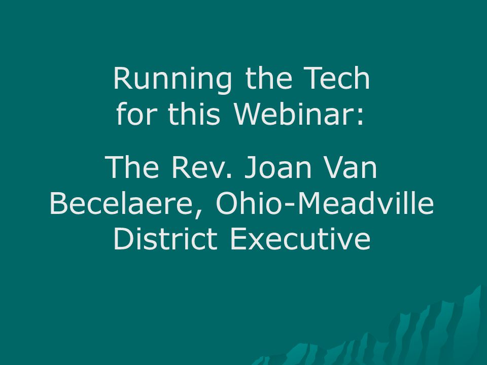 Running the Tech for this Webinar: The Rev. Joan Van Becelaere, Ohio-Meadville District Executive