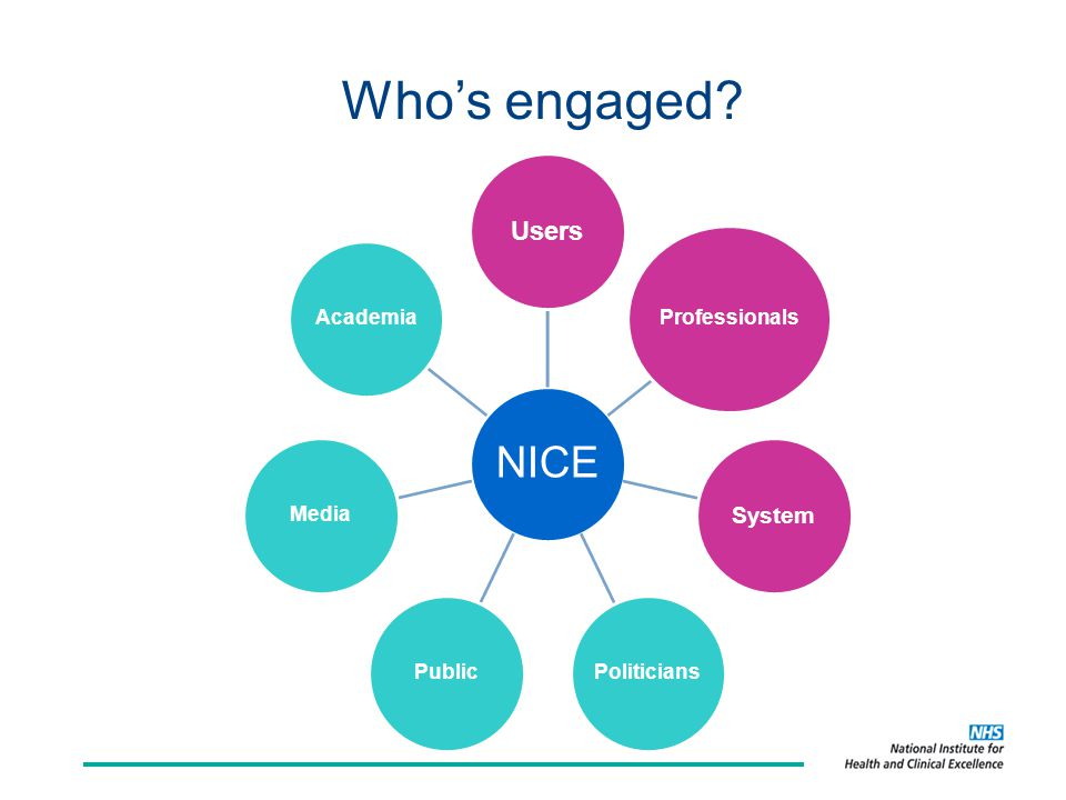 Who's engaged? NICE Users Professionals System PoliticiansPublicMediaAcademia