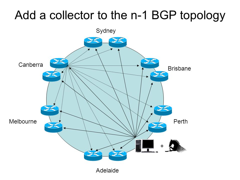 Add a collector to the n-1 BGP topology Sydney Melbourne Brisbane Adelaide Canberra Perth +