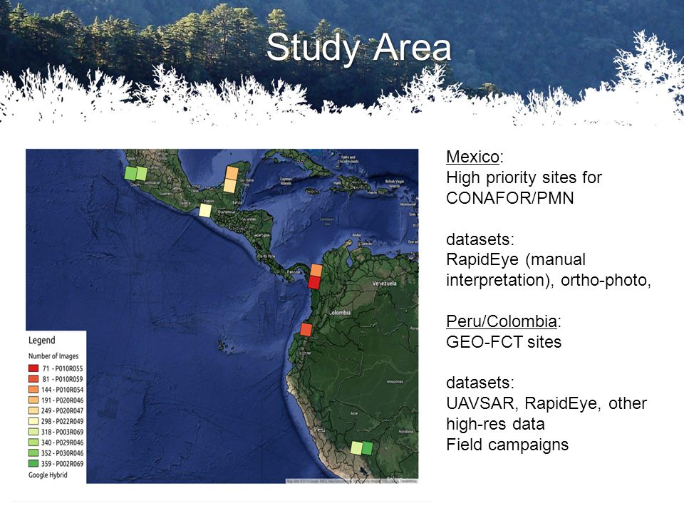 Study Area Mexico: High priority sites for CONAFOR/PMN datasets: RapidEye (manual interpretation), ortho-photo, Peru/Colombia: GEO-FCT sites datasets: