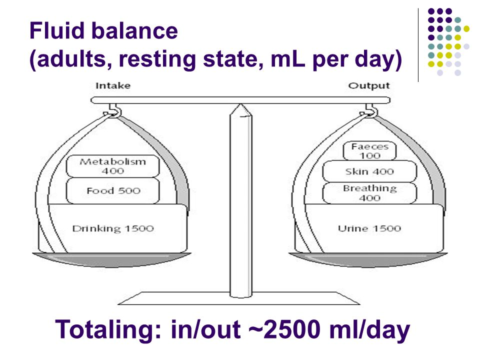 Fluid balance (adults, resting state, mL per day) Totaling: in/out ~2500 ml/day