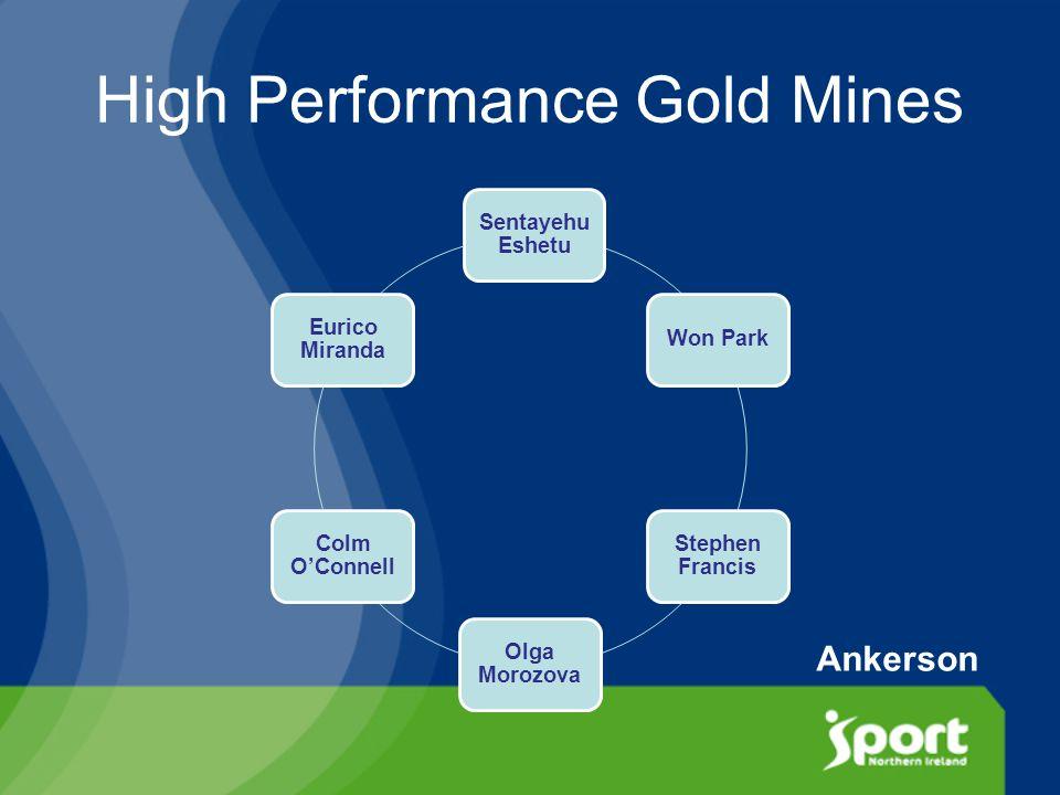 High Performance Gold Mines Sentayehu Eshetu Won Park Stephen Francis Olga Morozova Colm O'Connell Eurico Miranda Ankerson
