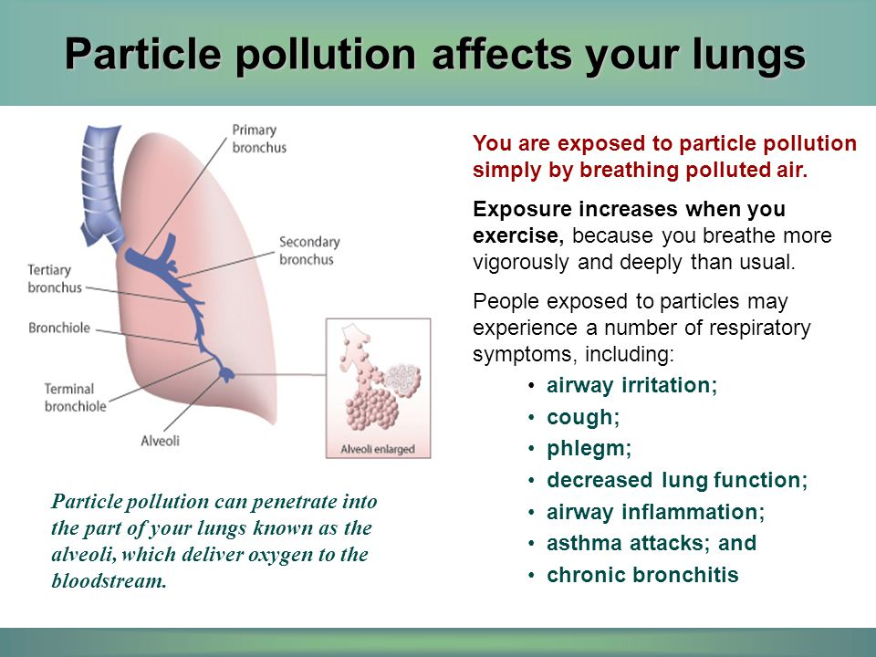 And particle pollution affects your heart Particle pollution has been linked to changes that indicate your heart isn't as healthy as it should be.