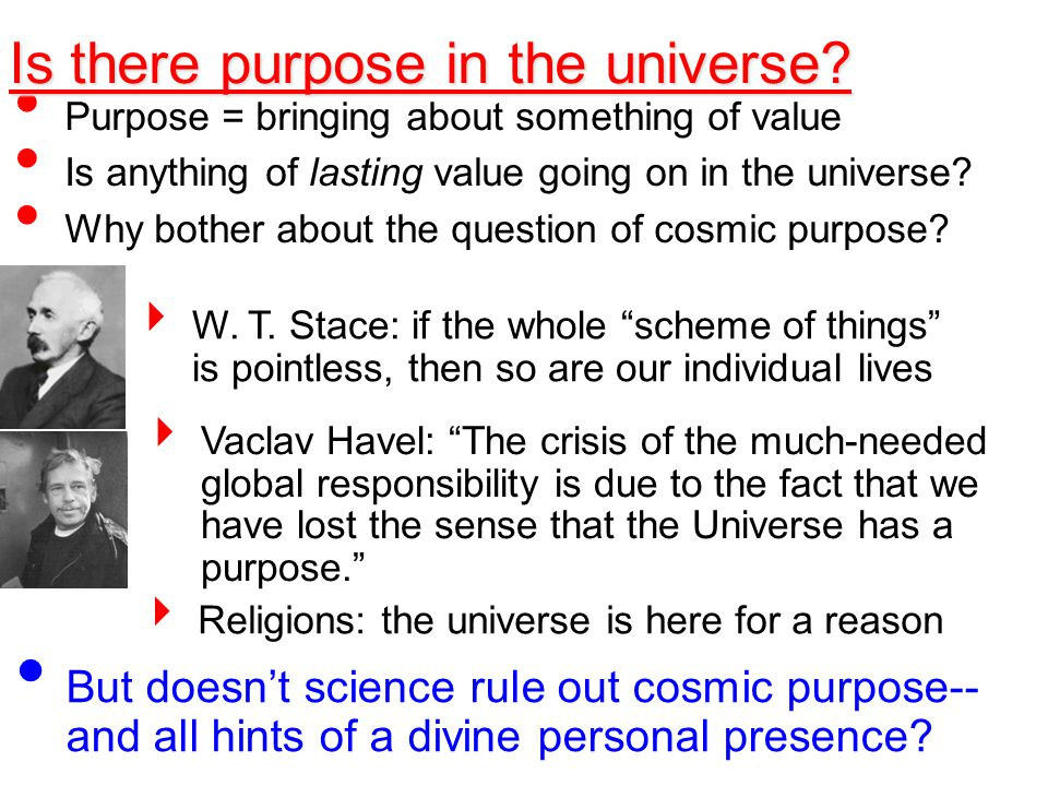 the more [scientifically] comprehensible the universe has become, the more pointless it also seems. Steven Weinberg Is there purpose in the universe?