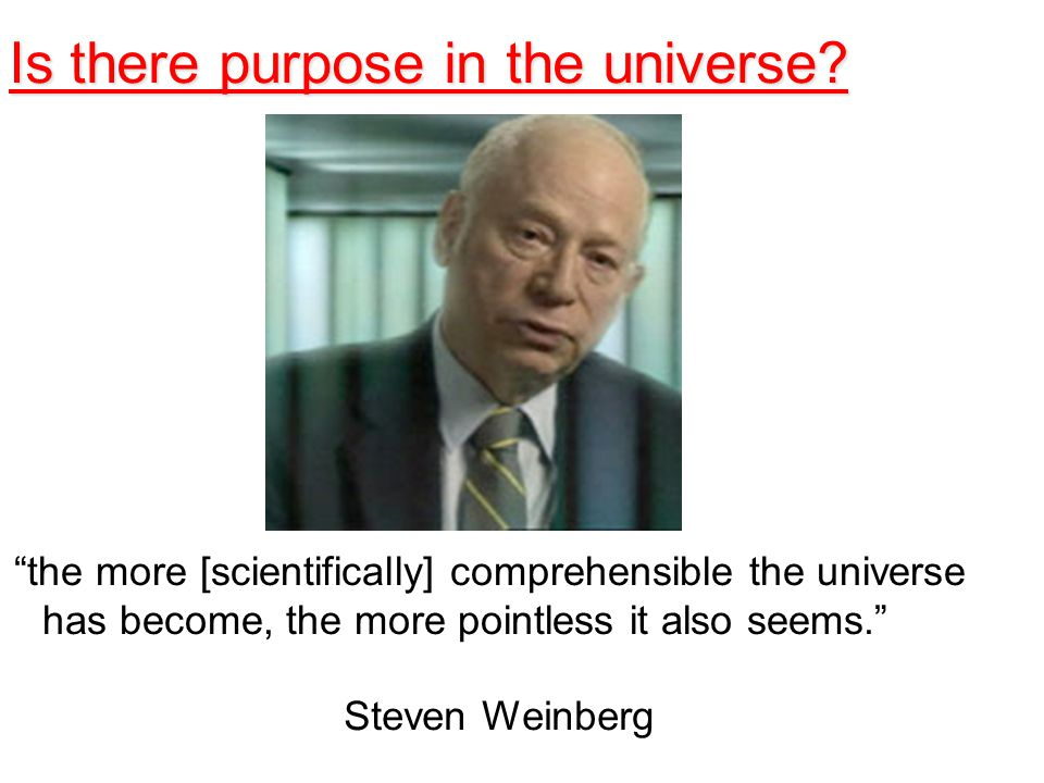 the more [scientifically] comprehensible the universe has become, the more pointless it also seems. Steven Weinberg Is there purpose in the universe