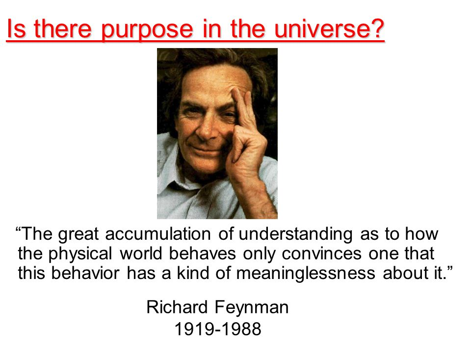 What point? It's just a physical system. Margaret Geller Is there purpose in the universe?