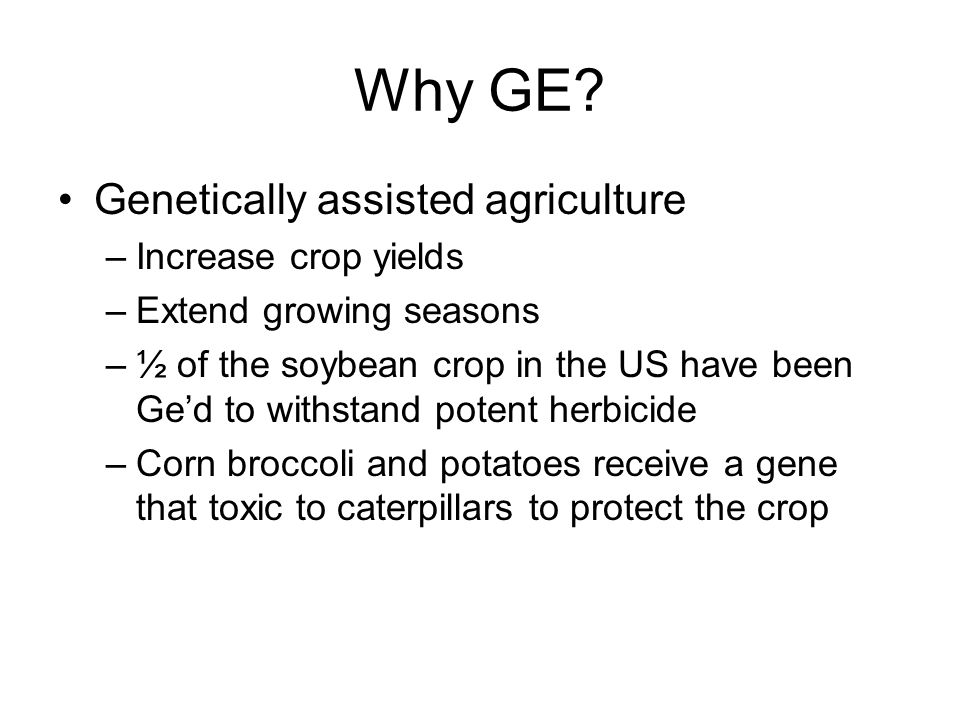Why GE? Genetically assisted agriculture –Increase crop yields –Extend growing seasons –½ of the soybean crop in the US have been Ge'd to withstand po
