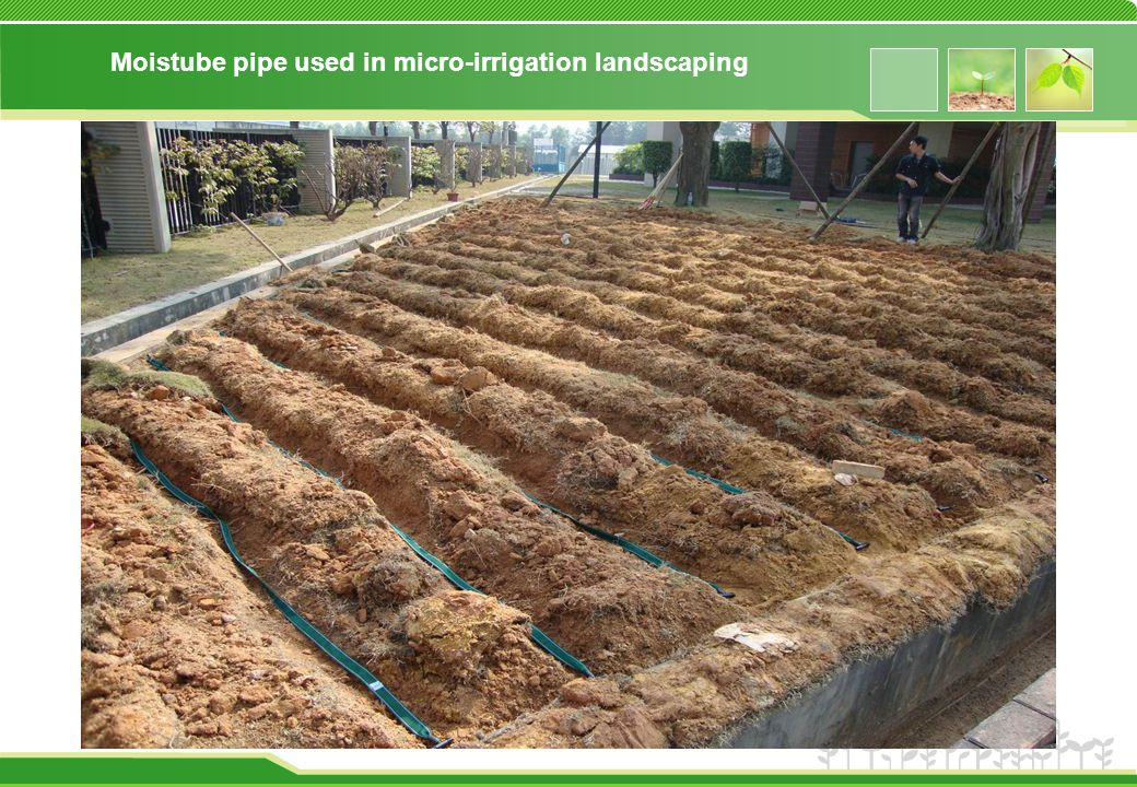 Moistube pipe used in micro-irrigation landscaping