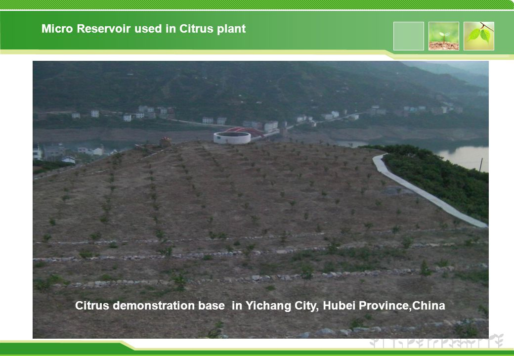 Micro Reservoir used in Citrus plant Citrus demonstration base in Yichang City, Hubei Province,China