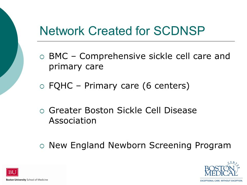 Network Created for SCDNSP  BMC – Comprehensive sickle cell care and primary care  FQHC – Primary care (6 centers)  Greater Boston Sickle Cell Dise