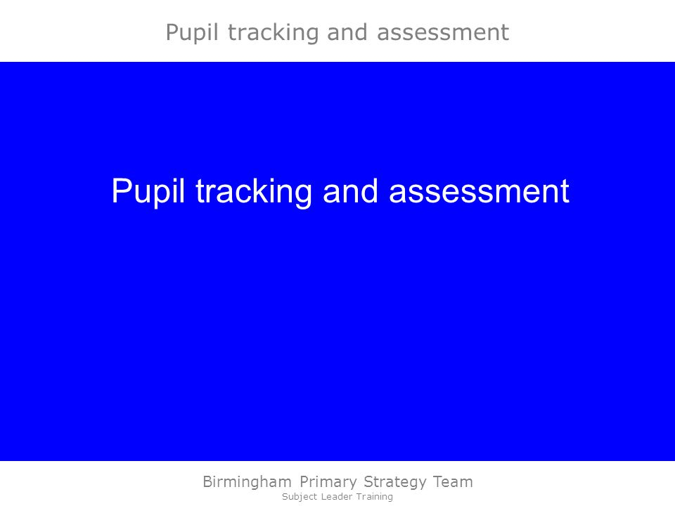 Birmingham Primary Strategy Team Subject Leader Training Pupil tracking and assessment