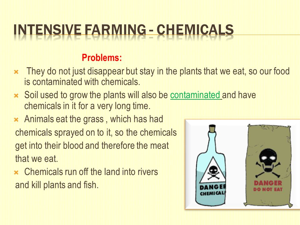 Problems:  They do not just disappear but stay in the plants that we eat, so our food is contaminated with chemicals.  Soil used to grow the plants