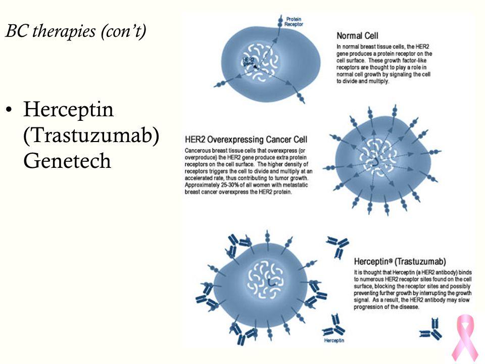 BC therapies (con't) Herceptin (Trastuzumab) Genetech