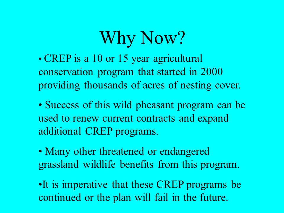 Why Now? CREP is a 10 or 15 year agricultural conservation program that started in 2000 providing thousands of acres of nesting cover. Success of this