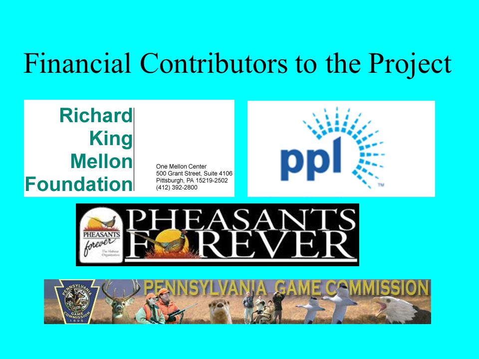 Financial Contributors to the Project