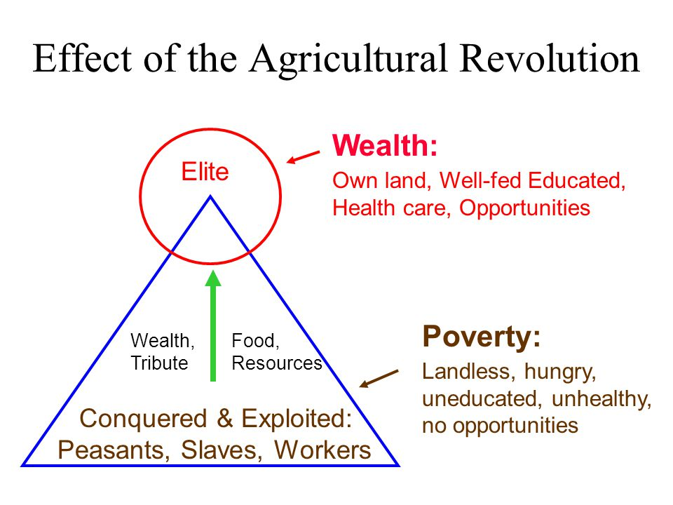 Effect of the Agricultural Revolution Elite Conquered & Exploited: Peasants, Slaves, Workers Wealth, Tribute Food, Resources Wealth: Own land, Well-fed Educated, Health care, Opportunities Poverty: Landless, hungry, uneducated, unhealthy, no opportunities