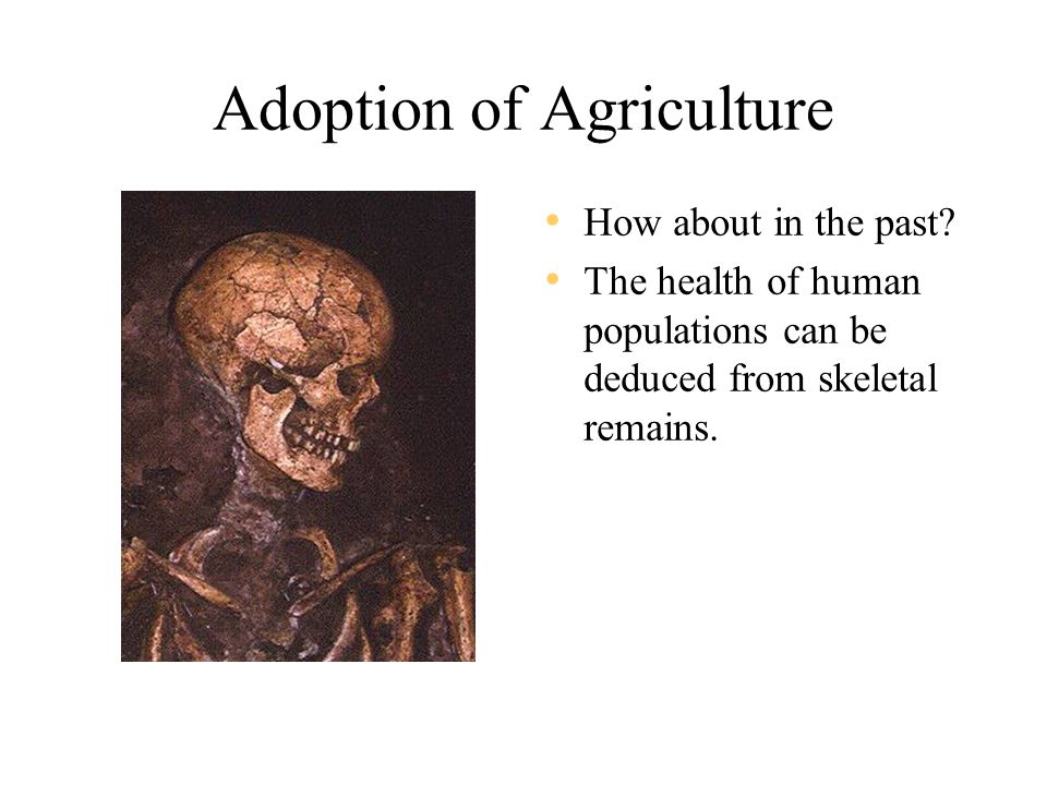 Adoption of Agriculture How about in the past.