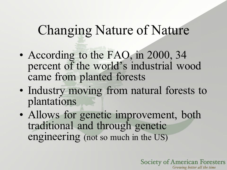 Changing Nature of Nature According to the FAO, in 2000, 34 percent of the world's industrial wood came from planted forests Industry moving from natu