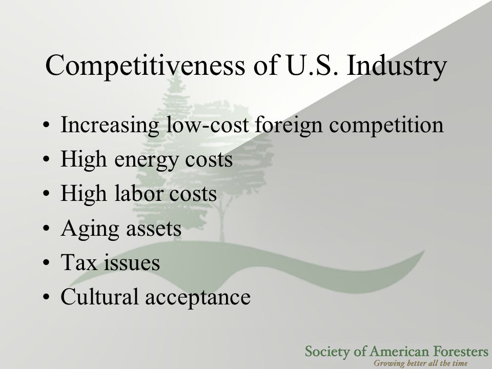 Competitiveness of U.S. Industry Increasing low-cost foreign competition High energy costs High labor costs Aging assets Tax issues Cultural acceptanc