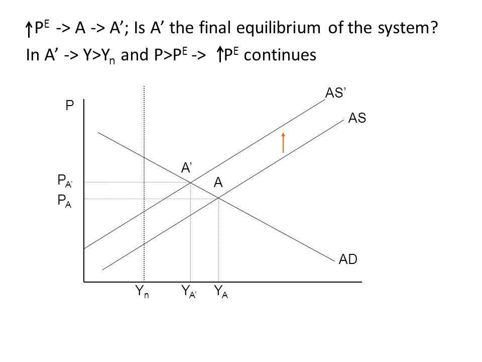 P PAPA PA'PA' A'A' A YnYn YA'YA' YAYA AD AS AS' P E -> A -> A'; Is A' the final equilibrium of the system? In A' -> Y>Y n and P>P E -> P E continues