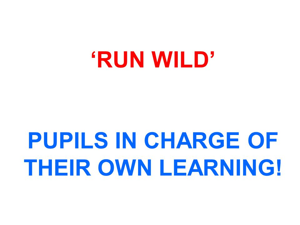 'RUN WILD' PUPILS IN CHARGE OF THEIR OWN LEARNING!