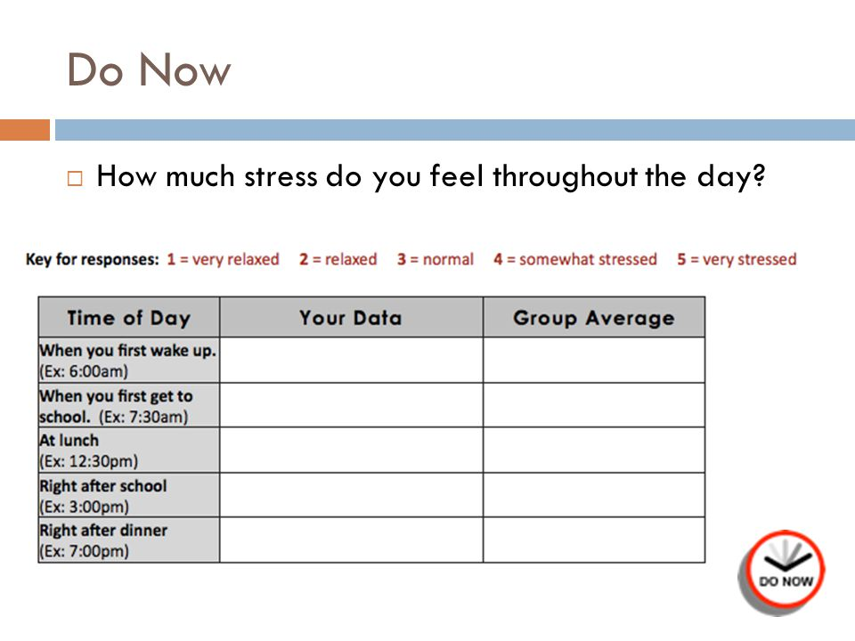 Do Now  How much stress do you feel throughout the day?