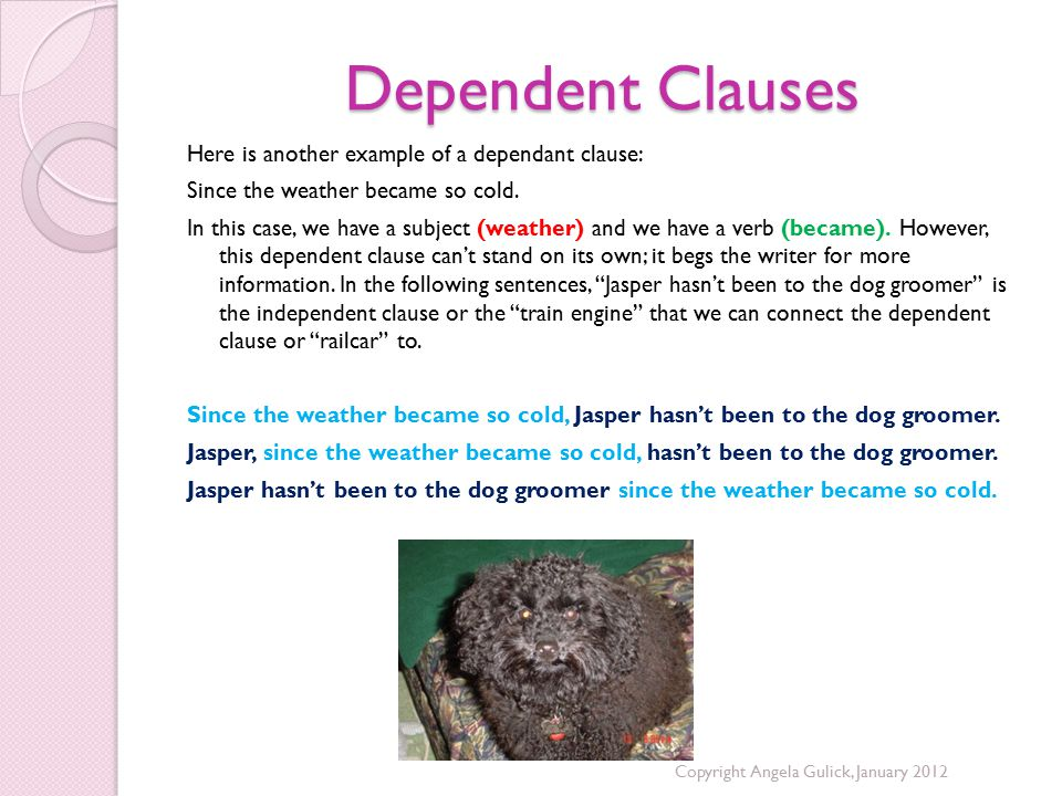 Dependent Clauses Here is another example of a dependant clause: Since the weather became so cold.