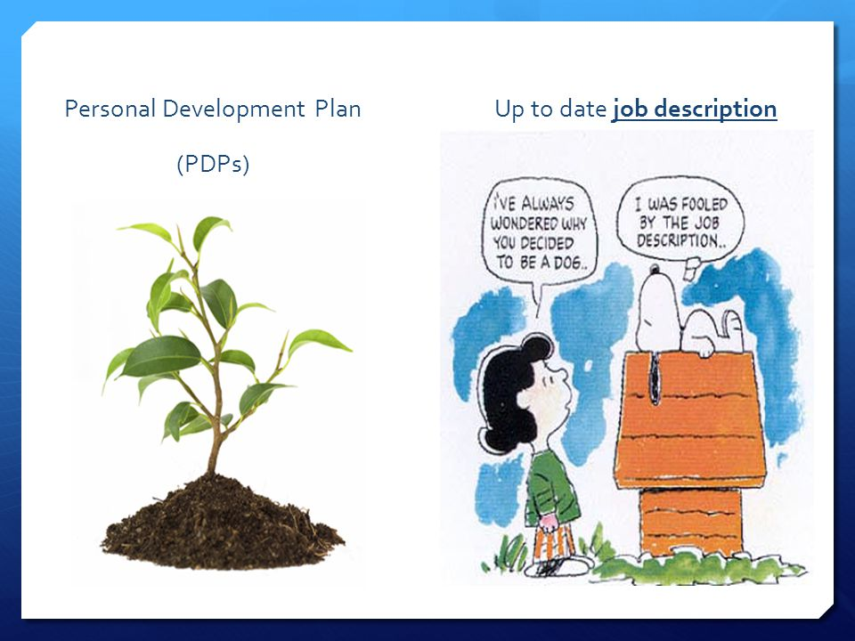 Personal Development Plan (PDPs) Up to date job description