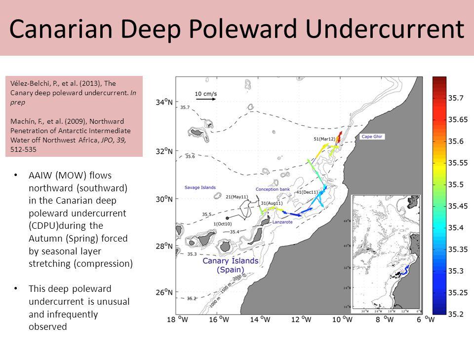 Canarian Deep Poleward Undercurrent Vélez-Belchi, P., et al.