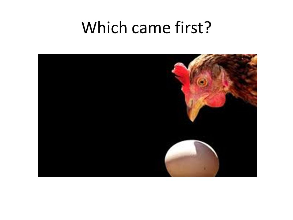 Which came first