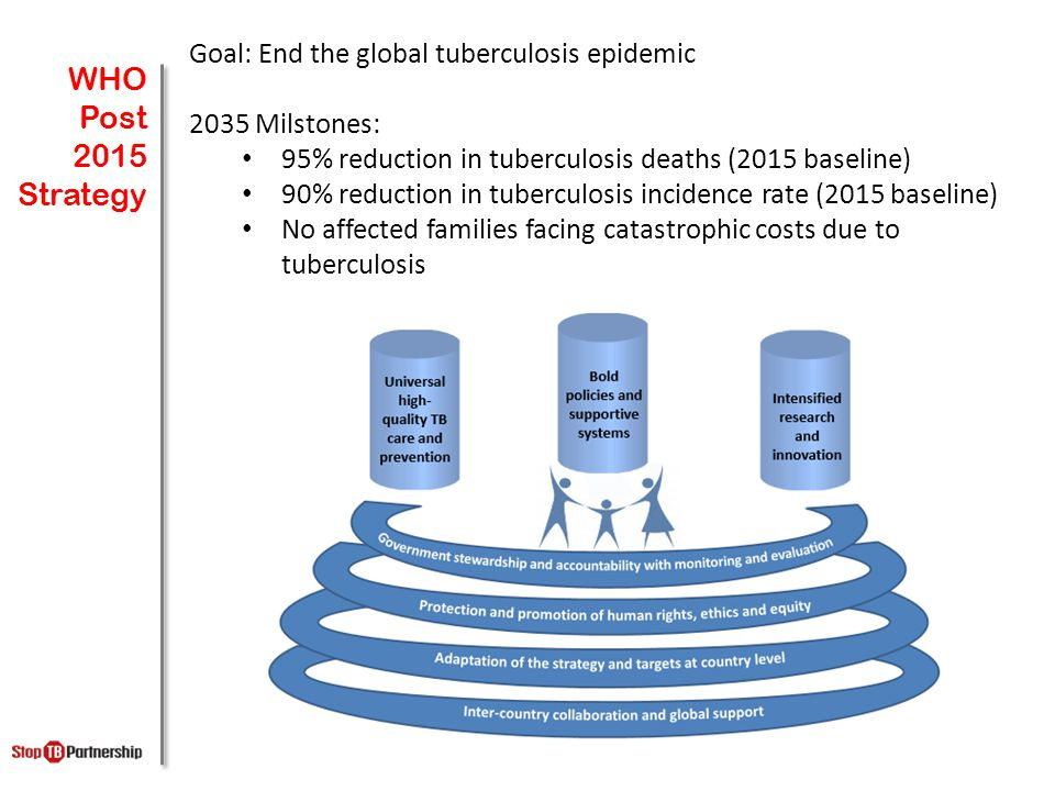 WHO Post 2015 Strategy Goal: End the global tuberculosis epidemic 2035 Milstones: 95% reduction in tuberculosis deaths (2015 baseline) 90% reduction in tuberculosis incidence rate (2015 baseline) No affected families facing catastrophic costs due to tuberculosis