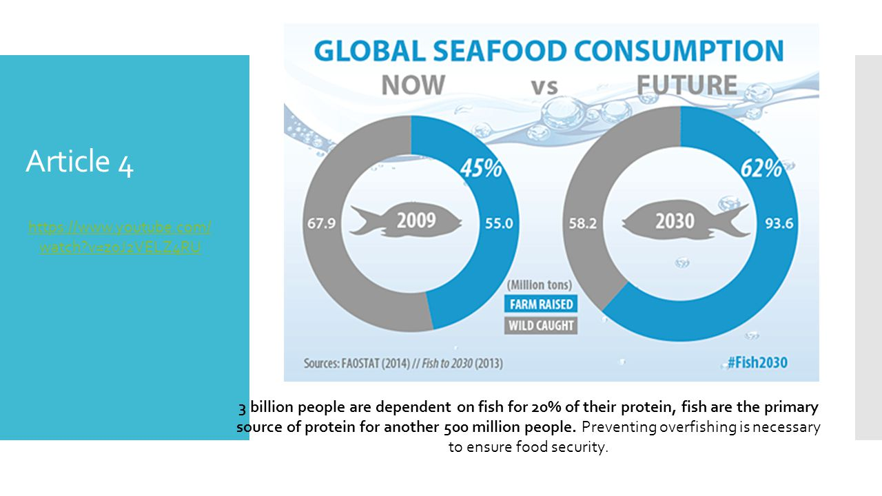 Article 4 3 billion people are dependent on fish for 20% of their protein, fish are the primary source of protein for another 500 million people.