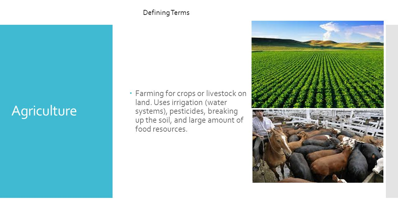 Agriculture  Farming for crops or livestock on land.