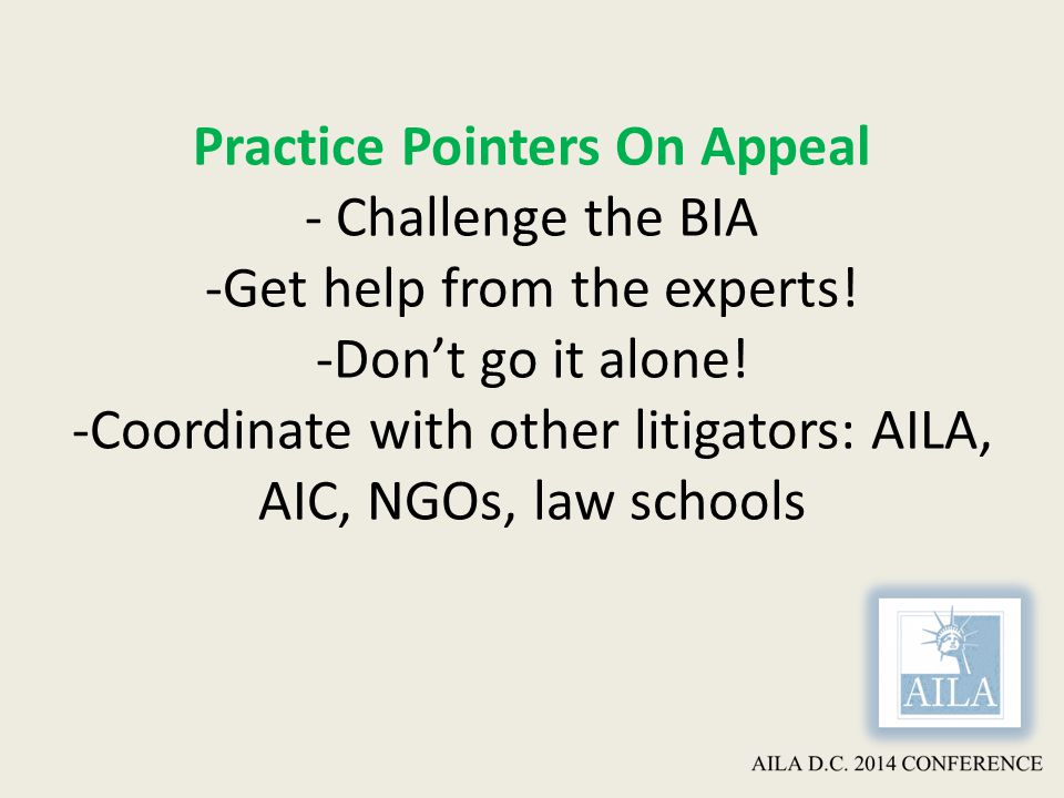 Practice Pointers On Appeal - Challenge the BIA -Get help from the experts.