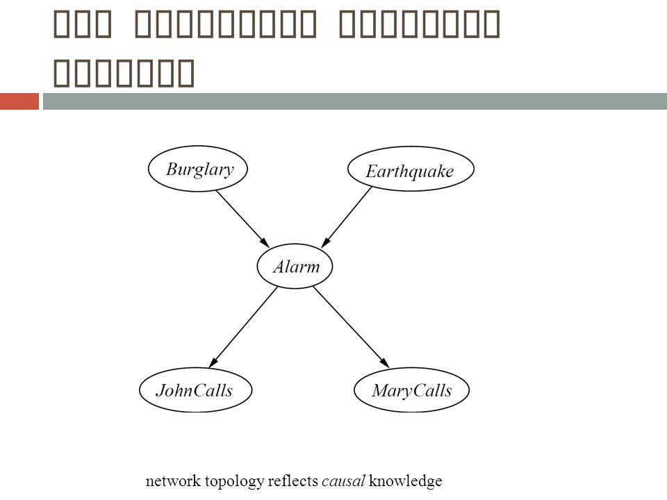The Resulting Bayesian Network network topology reflects causal knowledge