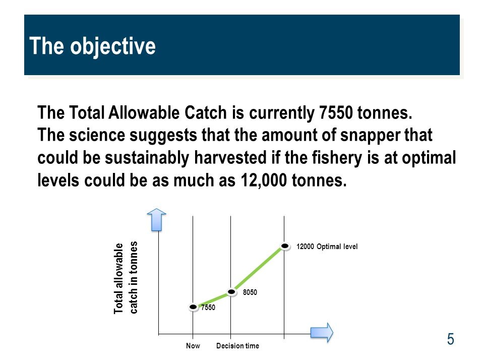 www.mpi.govt.nz 5 The objective The Total Allowable Catch is currently 7550 tonnes. The science suggests that the amount of snapper that could be sust