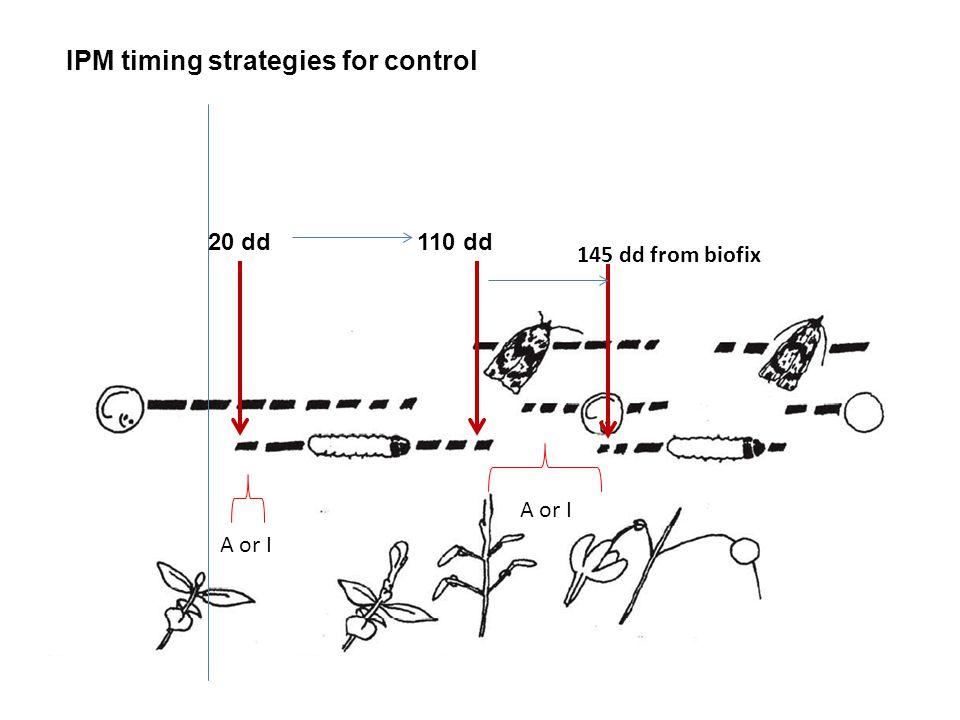 IPM timing strategies for control 20 dd 110 dd 145 dd from biofix A or I