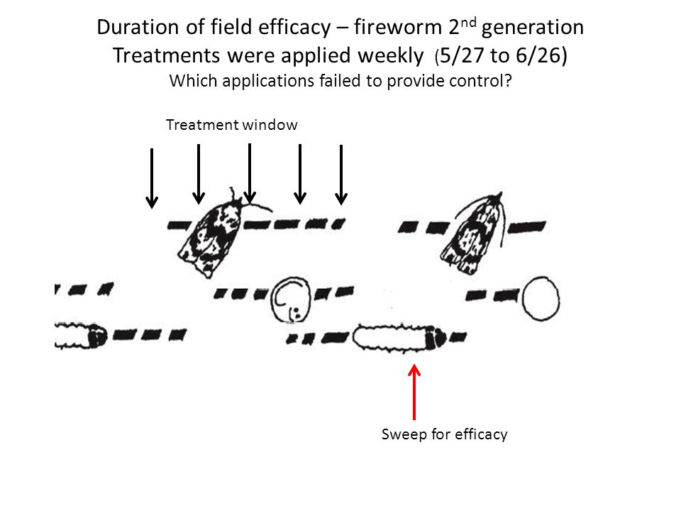 Develop more refined IPM program for fireworm management Refinement of trapping Use of trap data with GDD models Consideration of additional insect pest Resistance management
